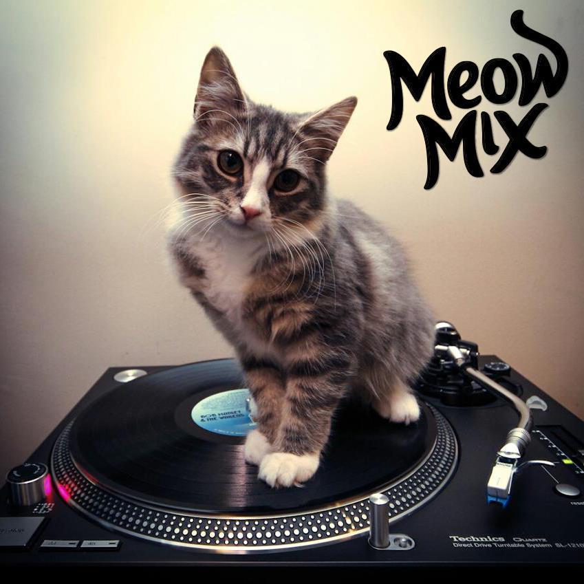 Meow Mix Episode #1