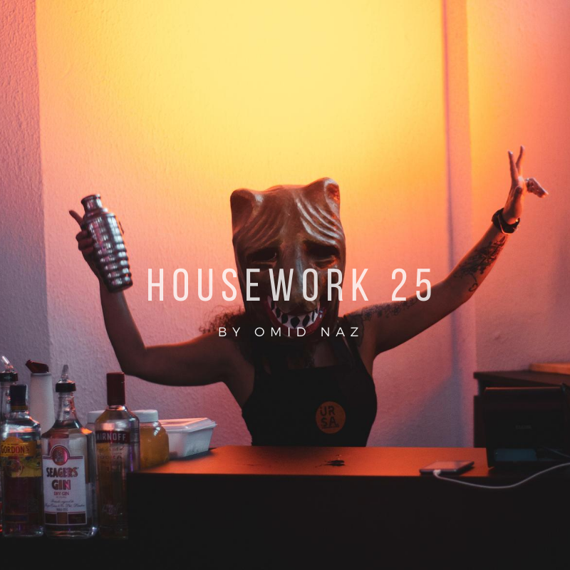 Housework 25