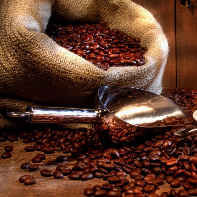 Raw Coffee Beans Vol 1
