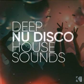 DFHS-Deep Nu-Disco House Mix Session