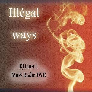 Illegal ways 31/12/2014