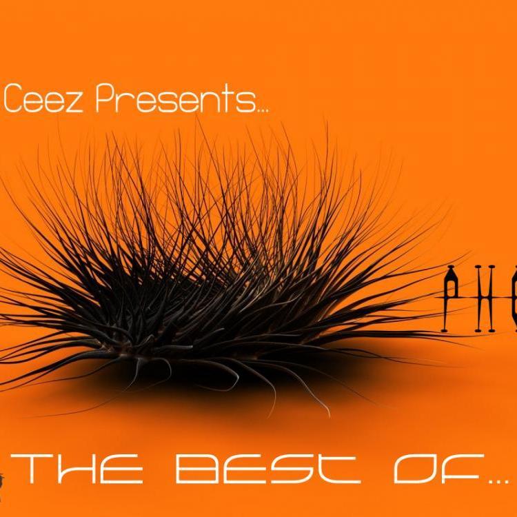 DJ Ceez Presents...Pheromone...Shine ON 2013