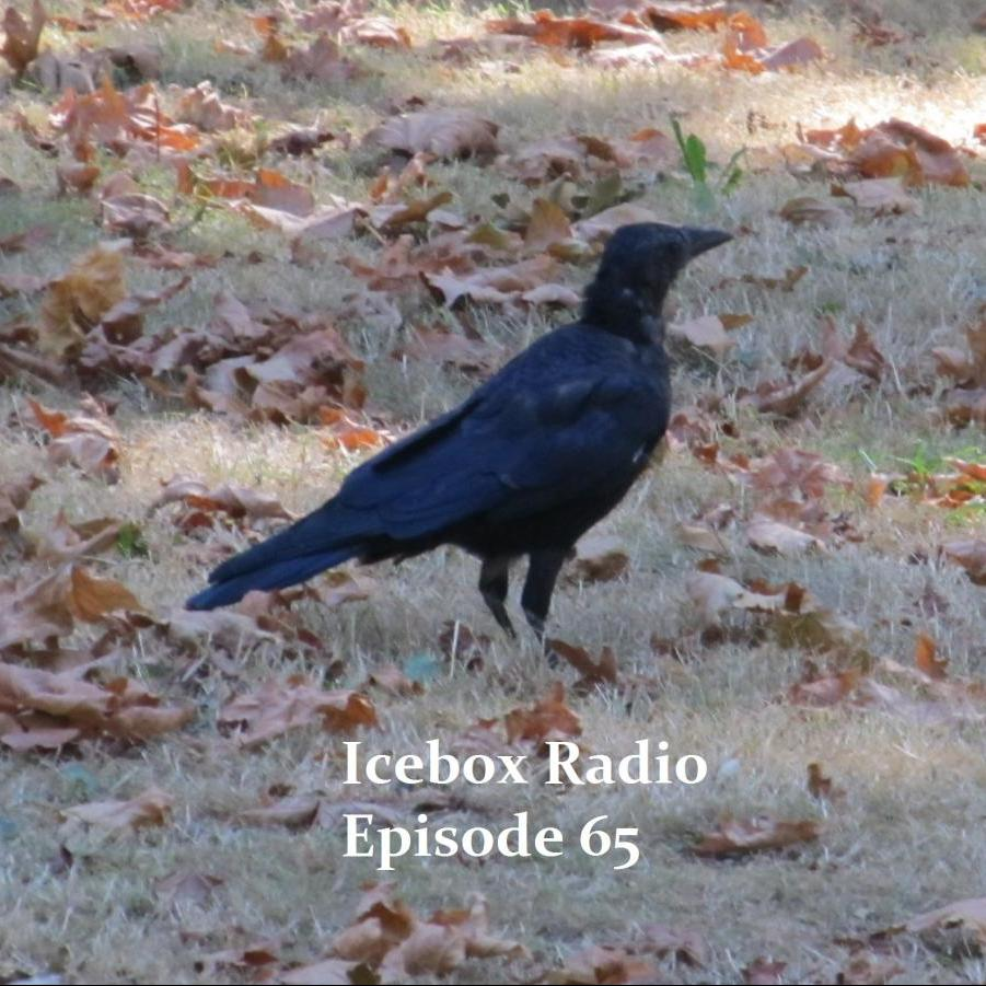 Icebox Radio Show Episode 65
