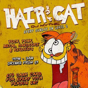 Hair of the Cat (15-Dec-2013)