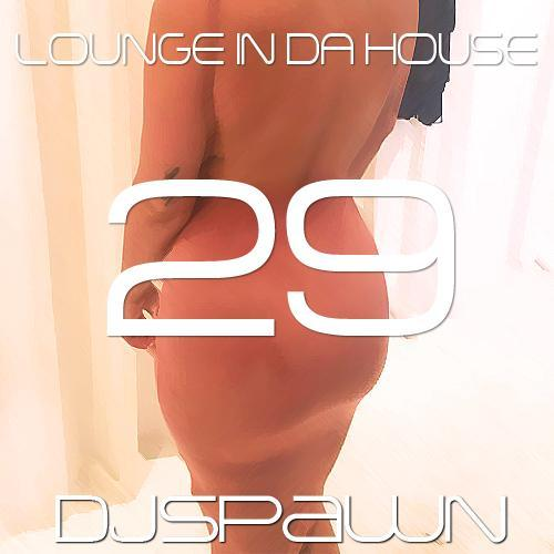 Lounge In Da House 29