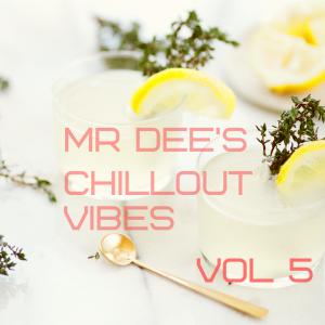 Chill playlists by Serato DJs