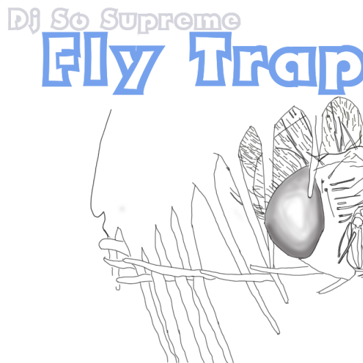 12/20/19 Fly Trap