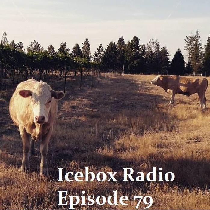 Icebox Radio Show Episode 79