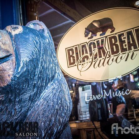 Black Bear - 4/22/16