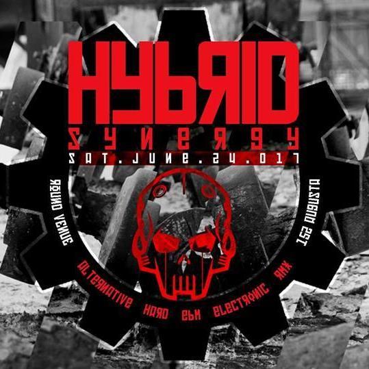 HYBRID // SYNERGY