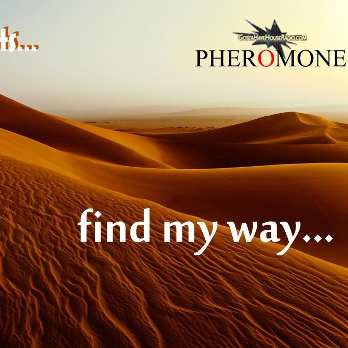 DJ Ceez Presents...Pheromone...Find My Way