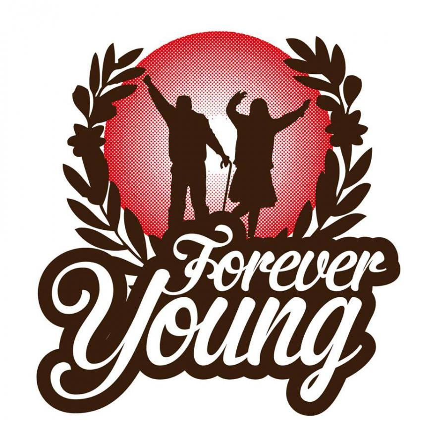 forever-young-party-norva-for-translators-russian
